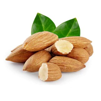 Fresh Almond Nuts available online at Vegberry in Dubai, UAE