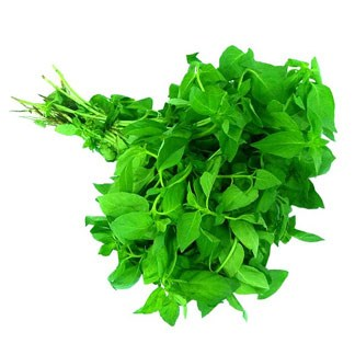 Fresh Holy Basil available online at Vegberry in Dubai, UAE