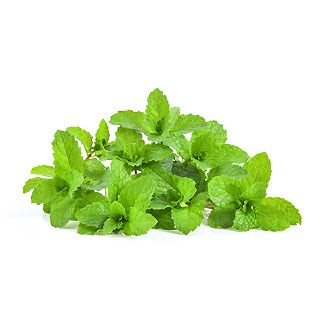 Fresh Mint Leaves available online at Vegberry in Dubai, UAE
