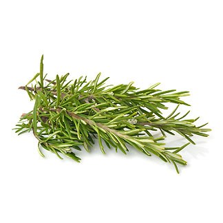 Fresh Rosemary available online at Vegberry in Dubai, UAE